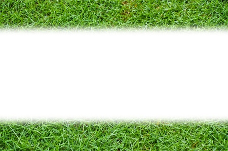Simple template green grass background isolated photo