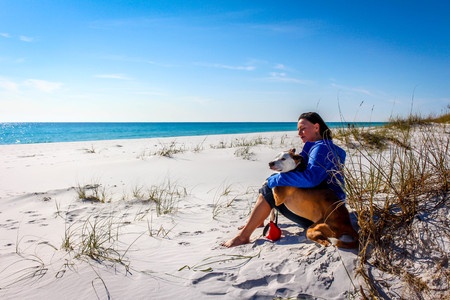 Beautiful beach scene of the Emerald Coast of Florida with people andor dog, Waves slowly washing ashore. Sky is deep blue, water a beautiful teal, and the sand is a sugary white all in the Florida panhandle. Stock Photo