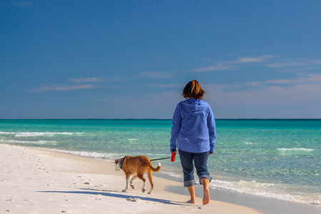 Beautiful beach scene of the Emerald Coast of Florida with people and dog, Waves slowly washing ashore. Sky is deep blue, water a beautiful teal, and the sand is a sugary white all in the Florida panhandle. Foto de archivo