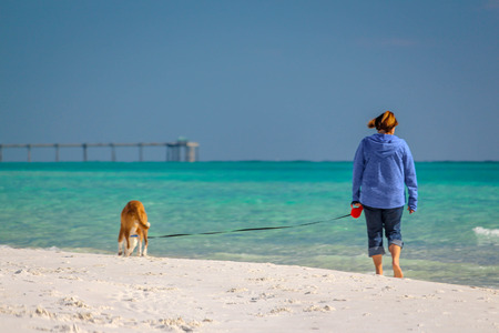 Beautiful beach scene of the Emerald Coast of Florida with people and dog, Waves slowly washing ashore. Sky is deep blue, water a beautiful teal, and the sand is a sugary white all in the Florida panhandle. Stock Photo