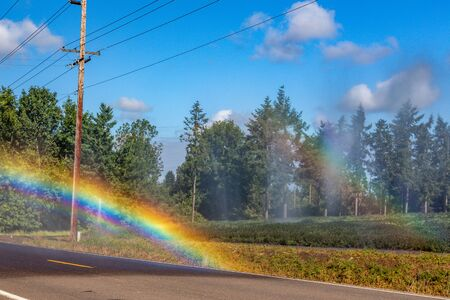 In sunlight rays, automatic sprinkler irrigation system spraying water on the crops in a farm field. Beautiful rainbow is prominent in the scene. 4k