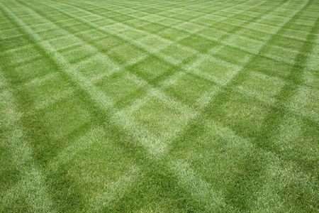front or back yard: Professionally manicured lawn cut in a diamond pattern Stock Photo
