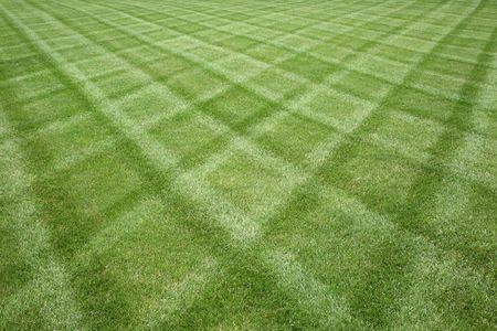 Professionell gepflegte Rasen Ausschneiden in einem Diamant-Muster