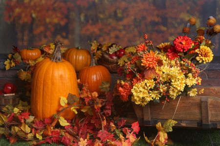 Fall scene with pumpkins and colored leaves Stock Photo
