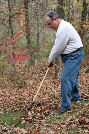 Man raking leaves Stock Photo
