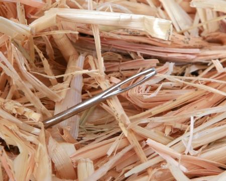 Aguja en un pajar Foto de archivo - 6061835