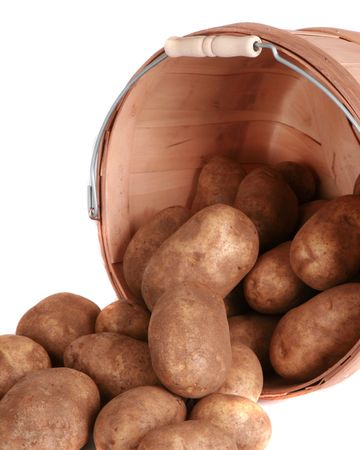 russet potato: Bushel of potatoes isolated on white Stock Photo