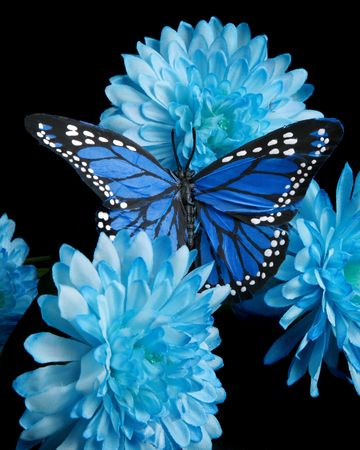 Blue carnations and butter fly - vertical