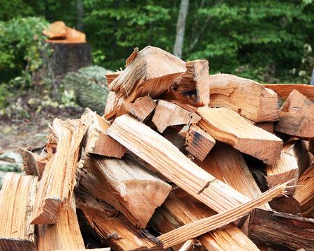 Legna da ardere con ceppo di albero in background