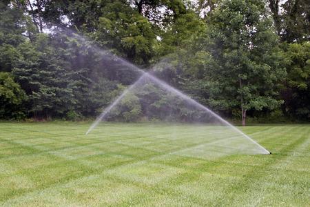 irrigation field: Lawn irrigation system.