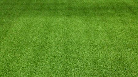 jugando futbol: A green football field background for playing football. Foto de archivo