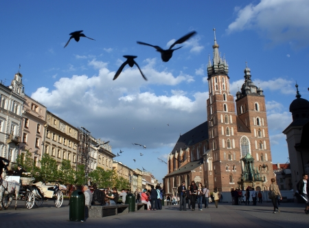 Pigeons flight with a view on the greatest Polish church - Mariacki Basilica in Krakow