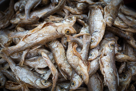 salted: salted fishes
