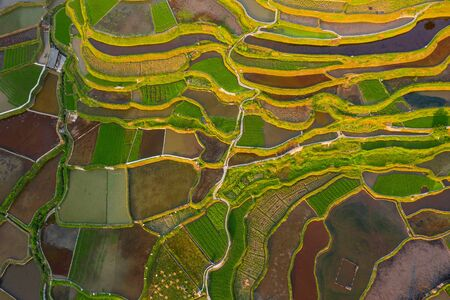 Terraced field in guizhou china Stok Fotoğraf