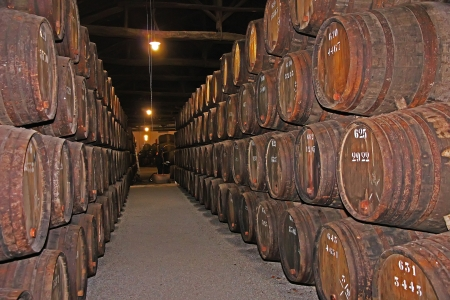 wooden wine barrels hold Port,Porto, Portugal