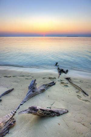 Logs on the beach on the Island of Karimunjawa at sunset