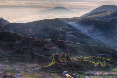 Rolling hills at sunrise in Dieng Plateau