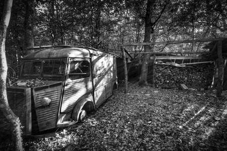 trashed: Abandoned van in the woods, surrounded by leaves Stock Photo