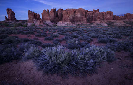 Rock formations at Arches National Park at night