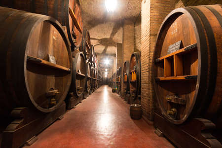 wineries: Large wooden casks in a wine cellar, Argentina