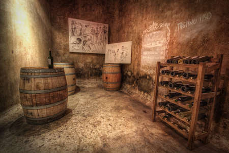 casks: Organic wine cellar with old wine casks