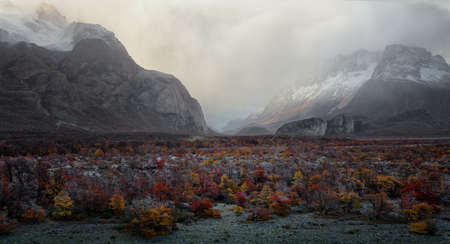 Mountains and plants with Autumn colours in El Chalten, Argentina Patagonia Stock Photo