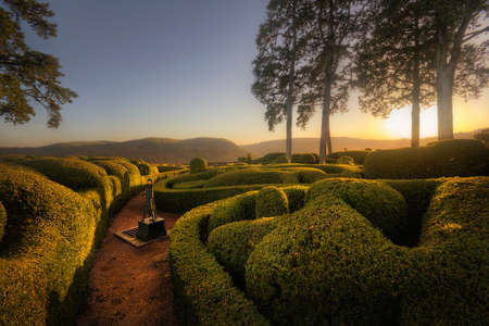Hedges in Marqueyssac Gardens in the fading sunlight