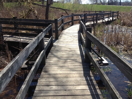 High angle bridge over water at park