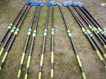 oars: Oars before a crew race