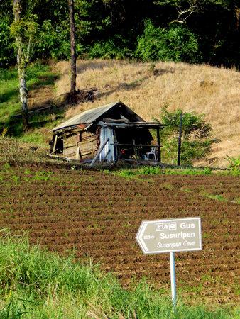 lush: hut on lush farm