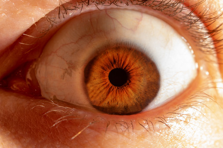 Surprised - wide open brown eye of a male person