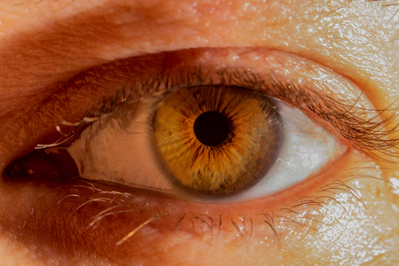 An opened brown eye of a male person