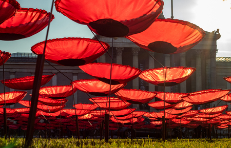 K?nigsplatz, munich, germany - November 10 2018: 'Red poppies as a memorial to peace' in munich, germany, at the 'kingsplace, k?nigsplatz' by Walter Kuhn - 100 years anniversary of the end of the first world war