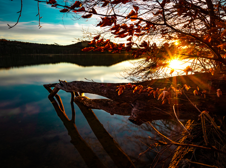 A beautiful sunset at a calm and peaceful lake - a tree trunk in the front Stok Fotoğraf