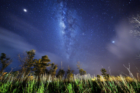 The starry sky and the Milky Way. Image contain noise, blur due to slow shutter speed.