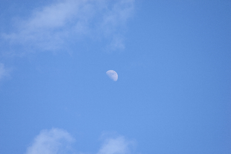 Half moon on blue sky