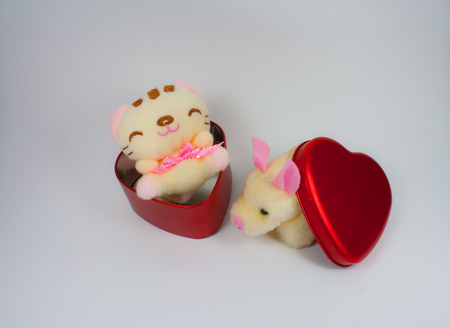 cal: Piglet and cal doll in heart box