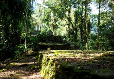 sierra: Inside Ciudad Perdida (Lost City) in Colombia