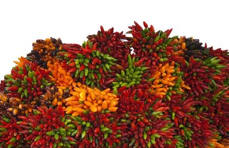 tabasco: Pepper Stock Photo