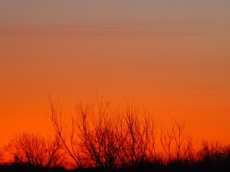 ちょうど日の出前に地平線