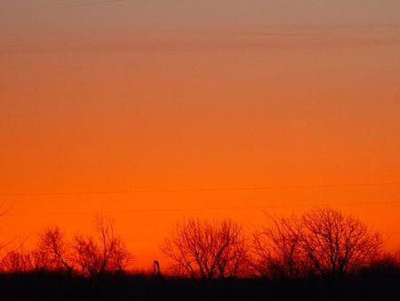 ちょうど日の出前に地平線。