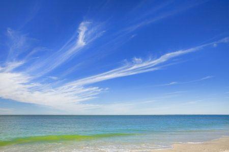 gulf of mexico: Florida. Floridian seascape, coastline. Gulf of Mexico.