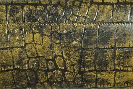 grungy: Crocodile skin. Grungy backdrop. Stock Photo