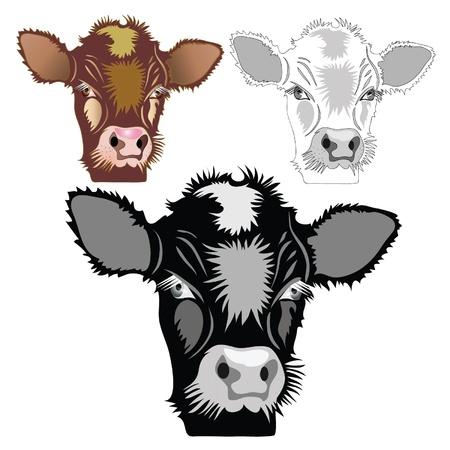 Bruin, zwart, wit kalf. Huisdier. cartoon. Stock Illustratie