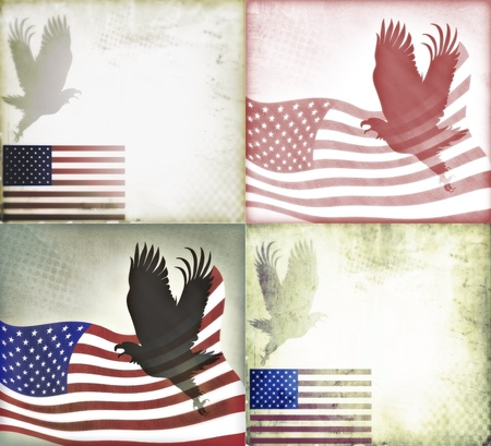 American flag and American Bald Eagle illustration