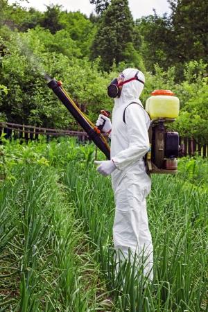 pulverizador: El hombre en ropa protectora completa rociar productos químicos en el jardín  huerto