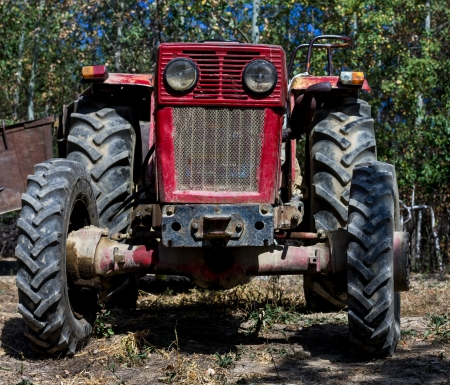 front of a farm tractor in a garden photo