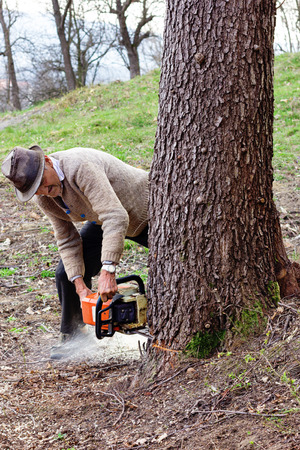 Old man cutting trees using an electrical chainsaw in the countryside photo