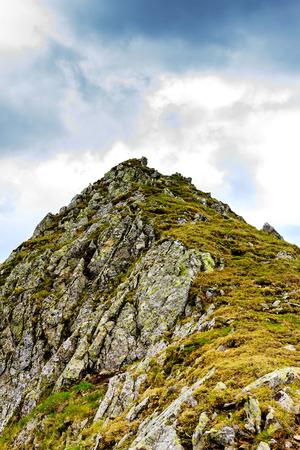 fagaras: Bella estate paesaggio dalle montagne Fagaras, Romania