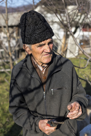 Old farmer trimming trees in his orchard with the scissors